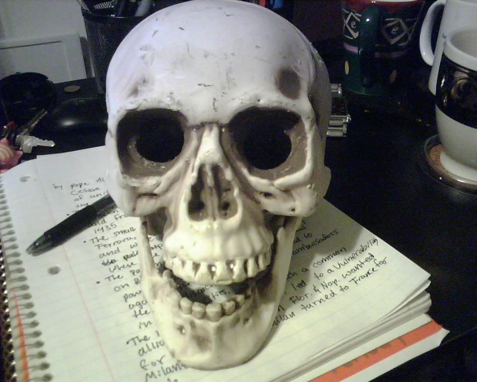 Buy paper mache skulls - 1 + DART 261: GUIDE TO ESSAY WRITING +